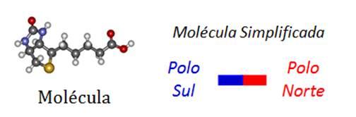 Molécula Simplificada
